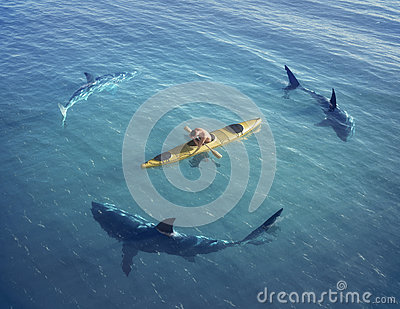 A man in a boat, kayak. was trapped in the middle of the ocean surrounded by sharks.