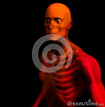 Man Bone 14