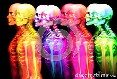 Man Bone 3