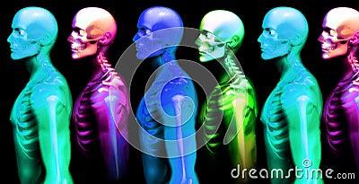 Man Bone 5