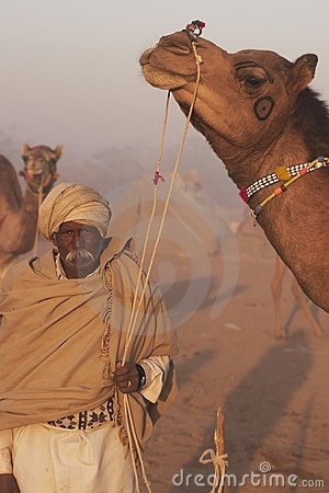 Man and Camel Editorial Photography