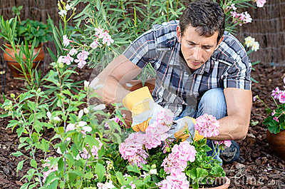 Man caring garden