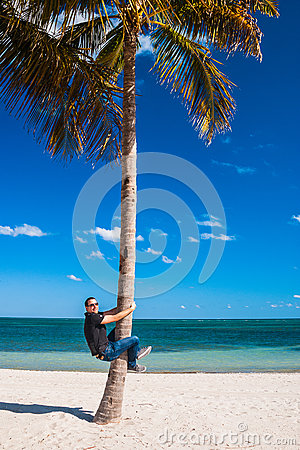Free Man Climbing A Palm Tree Stock Photo - 74685670