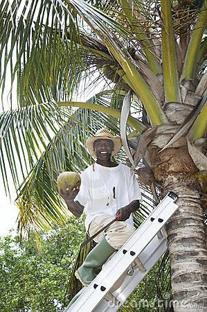 Man with a coconut
