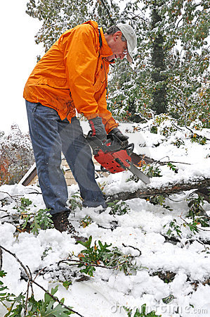 Man cutting fallen tree with chainsaw