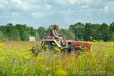 Man cutting hay