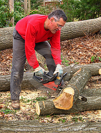 Free Man Cutting Oak Log With Chainsaw Royalty Free Stock Photo - 4891015