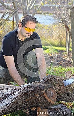 Man cutting tree trunk