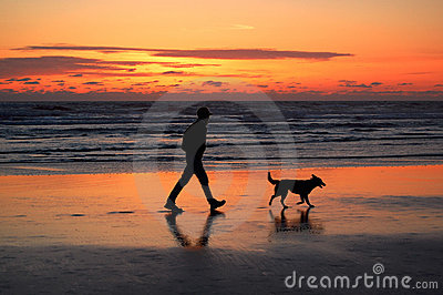 Man and dog walking at sunset