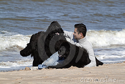 Man and is dogs in the beach