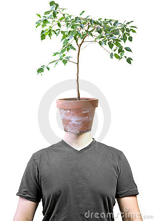 Man with ficus head