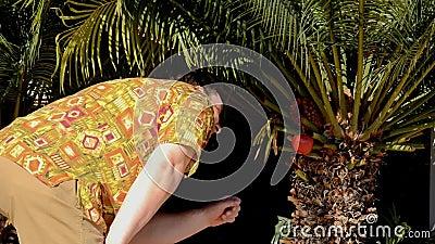 matire aloha