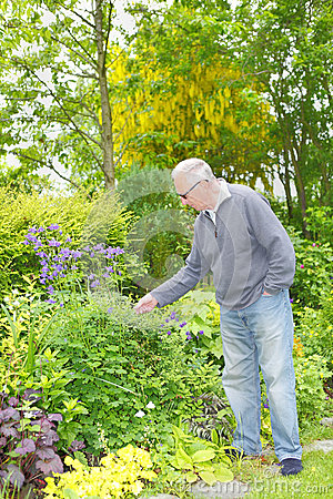 Man gardening in his garden