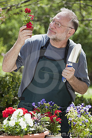 Man Gardening Outdoors