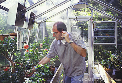 Man in greenhouse on cellphone