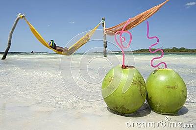 Man in Hammock Brazilian Beach with Coconuts