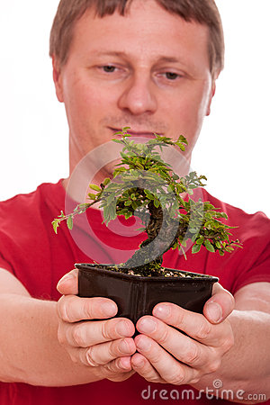 Man is holding a bonsai tree in his hands
