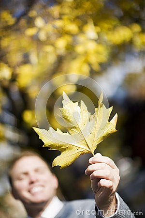 Man Holding Leaf Stock Photo - Image: 7836380