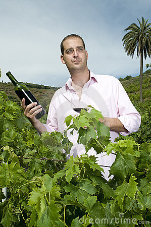 Man holding a wine bottle in a vineyard