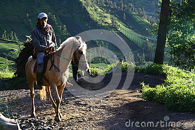 Man on the horse Editorial Image