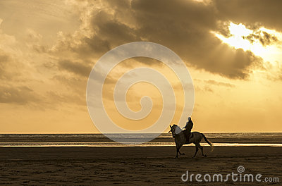 man horse riding on the beach