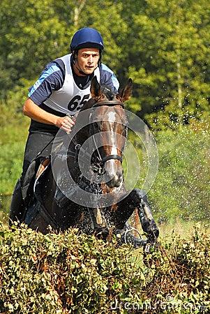 Man horsebak on jumping brown chestnut horse Editorial Image