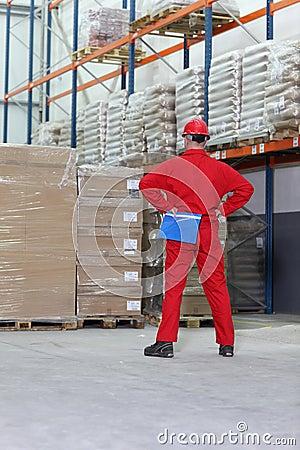 Free Man In Storage Warehouse Royalty Free Stock Image - 16969186