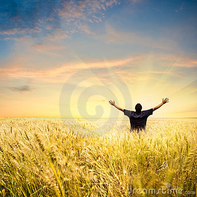 Free Man In Wheat Field Stock Photos - 10434713