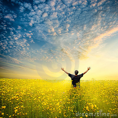 Free Man In Yellow Field Royalty Free Stock Photography - 10511447