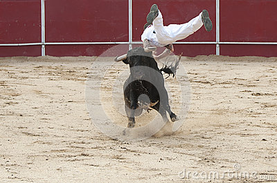 Man jumping on a bull in competition Editorial Photography