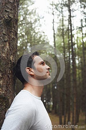 Free Man Leaning On Tree Trunk In Forest Stock Photos - 31839643
