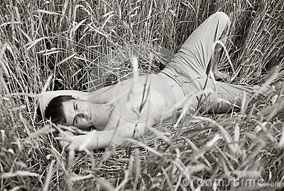 A man lie in field of wheat