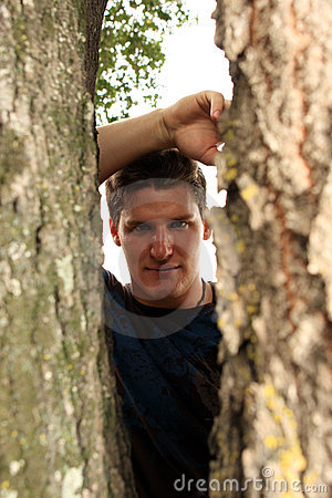 Man Looking Through Tree