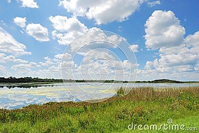 Man-made Wetlands- Orlando Wetlands Park