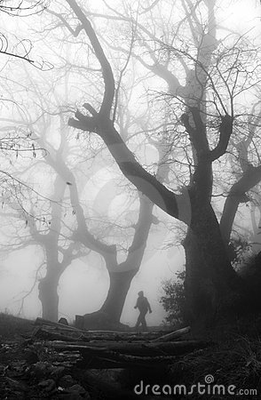 Man in a mysterious foggy forest