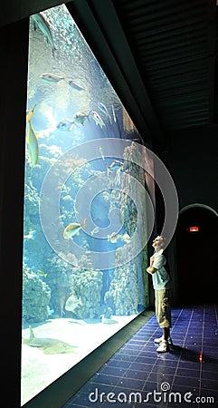 man near aquarium with fish in oceanographic museum monaco