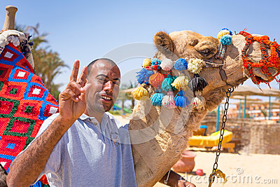 Man offering camel ride on the beach of Hurghada Editorial Image