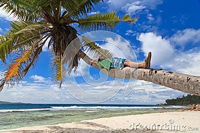 Man on palm in tropical beach
