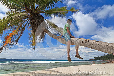 Man on palm in tropical beach