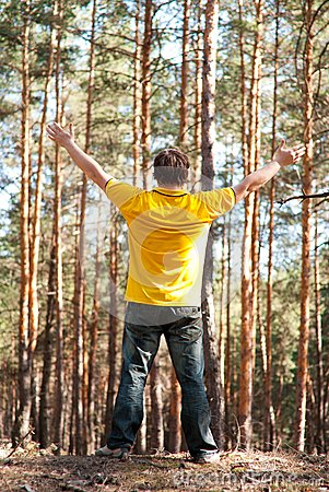 Man in the pine forest