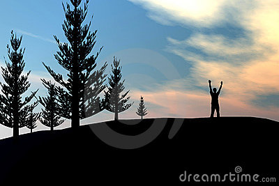 Man on pine tree forrest