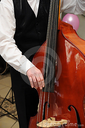 Man play contrabass close-up