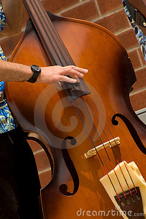 Free Man Playing Jazz Bass Royalty Free Stock Photos - 3179868
