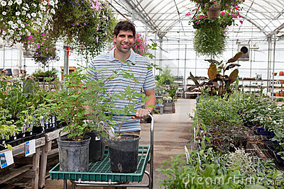 Man with potted plants on cart