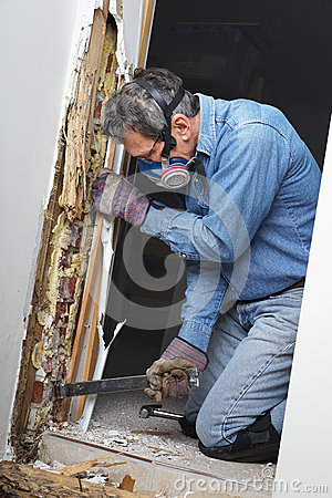 Free Man Removing Termite Damaged Wood From Wall Stock Photography - 38788192