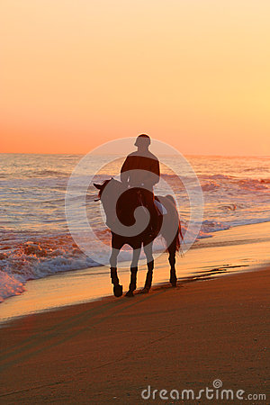 Man riding a horse on beach