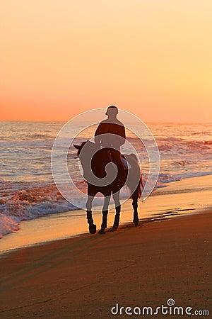 Man riding a horse on beach