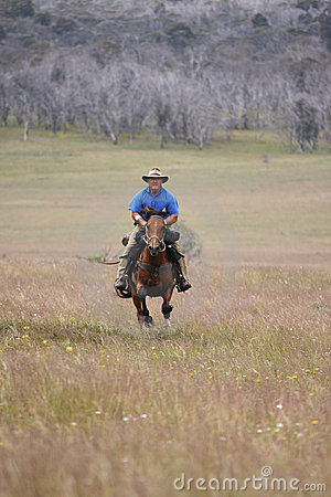 Man riding horse at speed