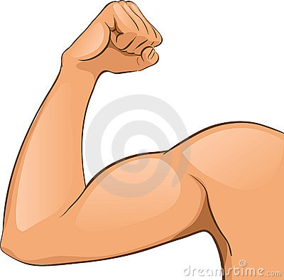 Free Man S Arm Muscles Stock Image - 20546841
