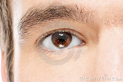 Man s brown eye
